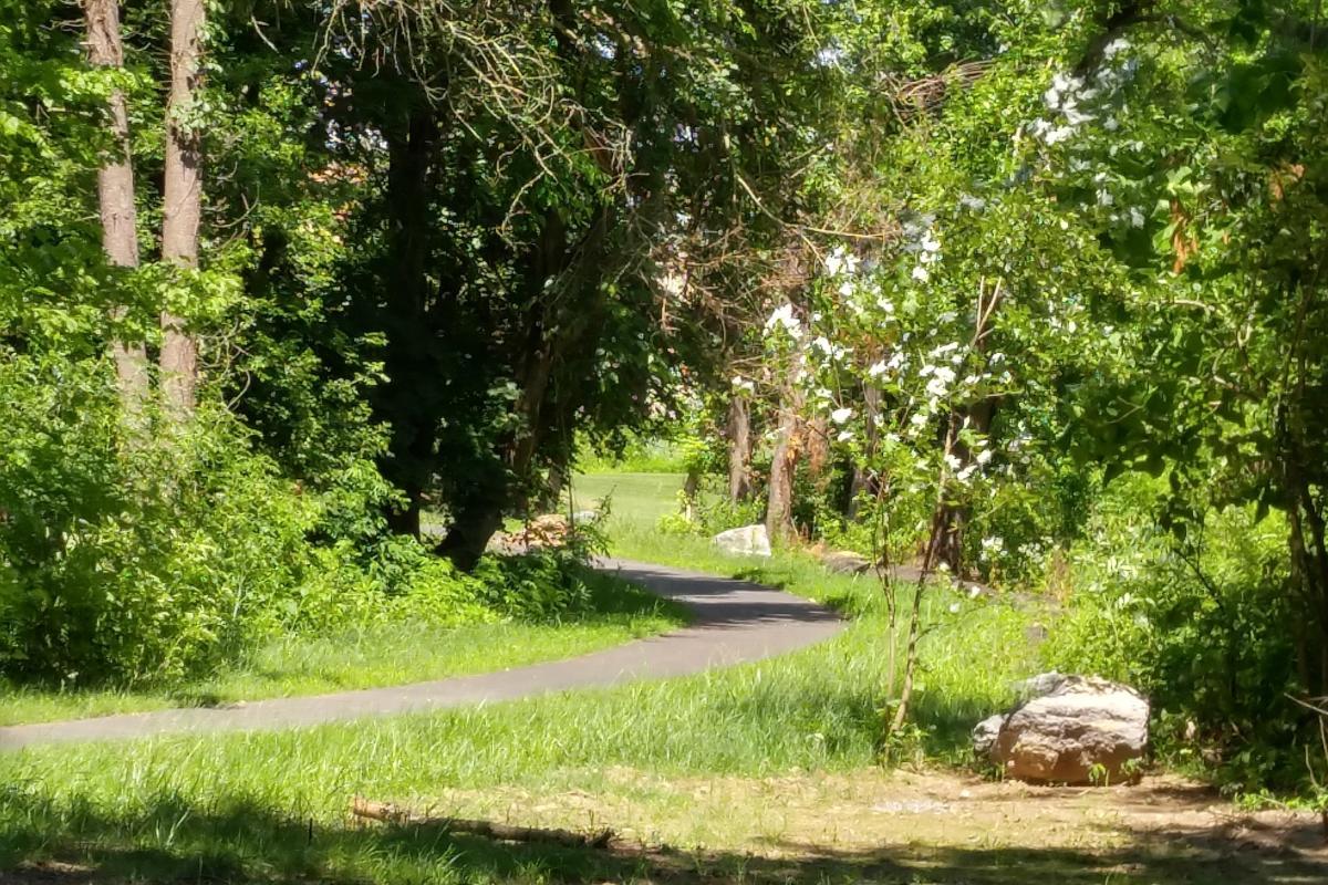 Pathway path near Chestnut Street